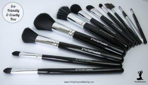 pin up passion makeup brush sets